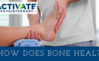 How does bone heal?