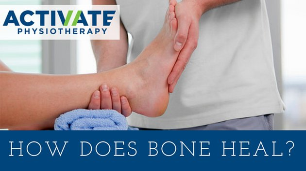 How does bone heal?