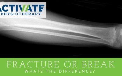 Fracture or Break… What's the difference?